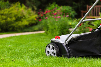 Healthy Lawn Services, Inc.